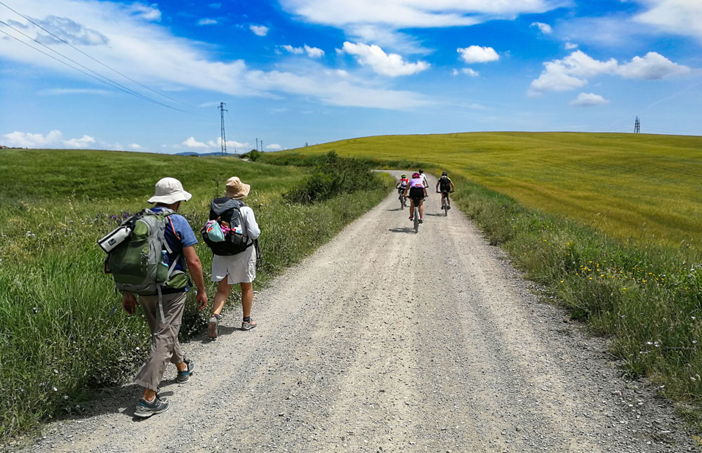 The Via Francigena of the South - Path